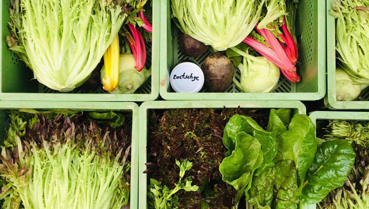 Gemüsekiste im Frühjahr