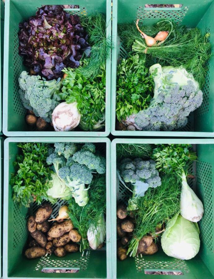Gemüsekiste im Oktober